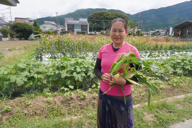 自然農:伊藤かおるさん
